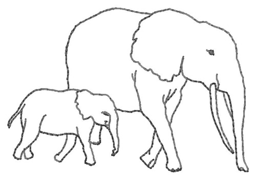 Wildlife Embroidery Design Elephants Outline From Grand Slam Designs