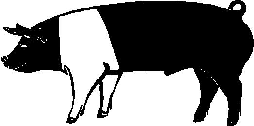 4 H Pig Clipart