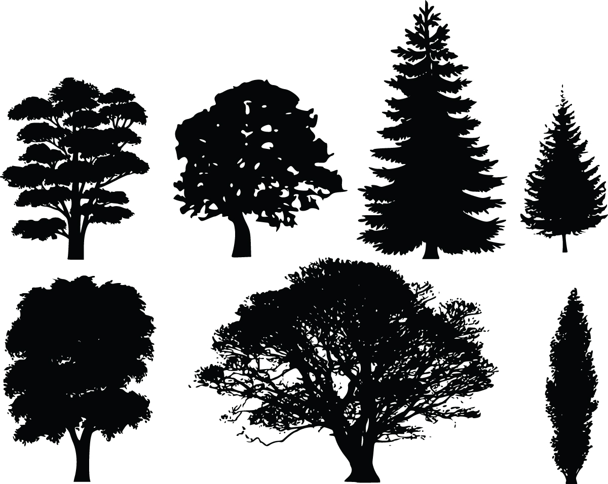 8 Free Clipart Of 7 Tree Silhouettes