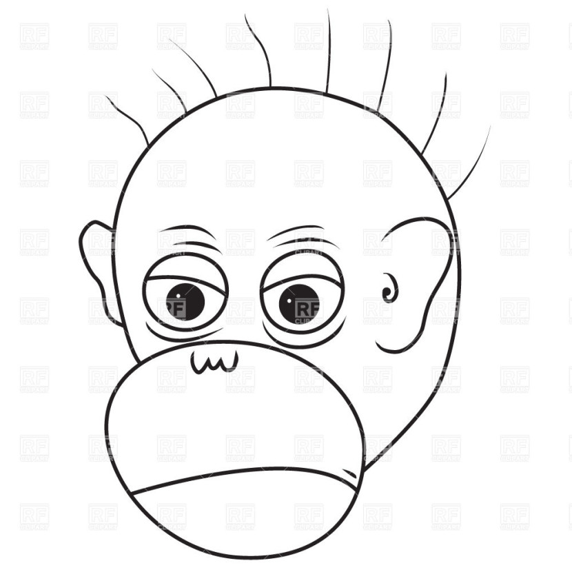 Angry Monkey Face 2 Plants And Animals Download Royalty Free