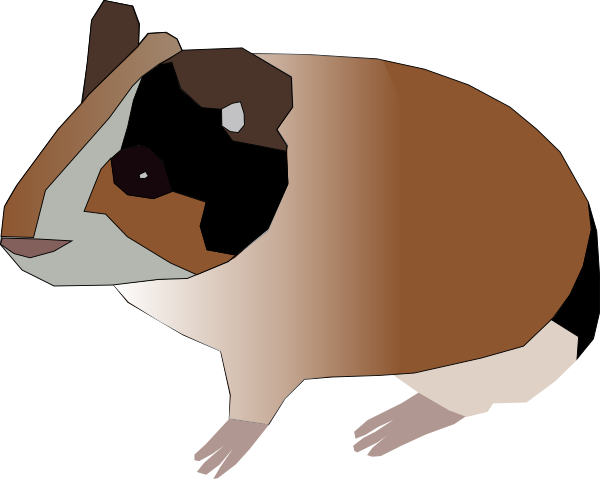 Animated Guinea Pig Clipart Free Clip Art Images