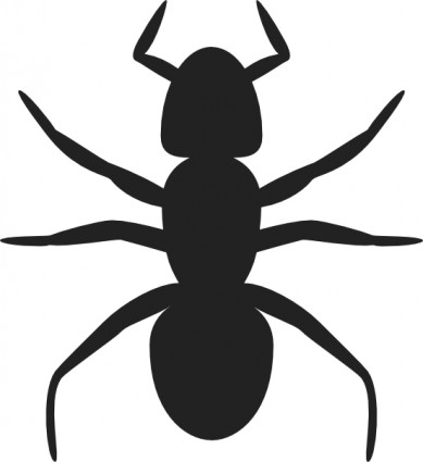 Ant Clip Art Free Vector In Open Office Drawing