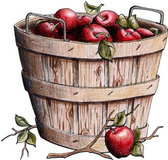 apple basket clipart clipartioncom