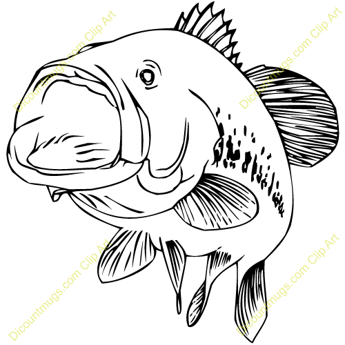 Bass Fish Clip Art 1