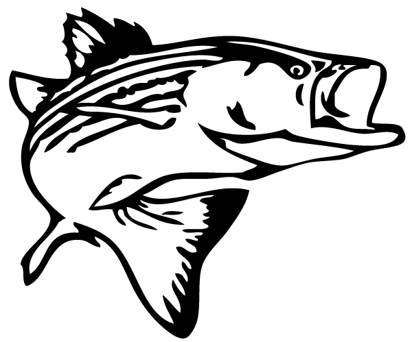Bass Fish Outline Clip Art Free Clipart Images