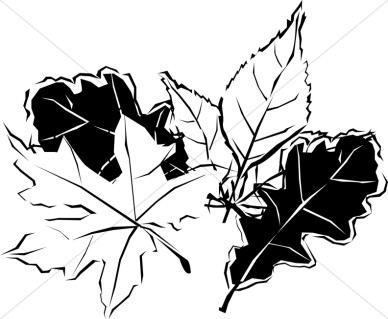 Black And White Autumn Leaves Nature Clipart
