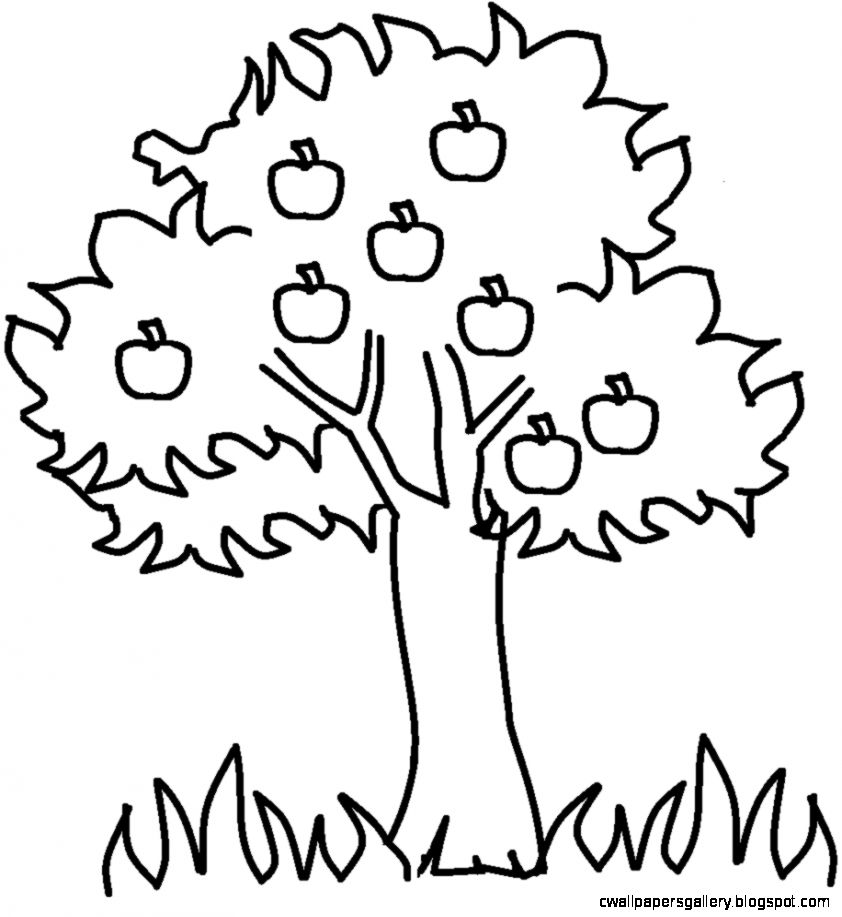 Best Tree Clipart Black And White Clipartion