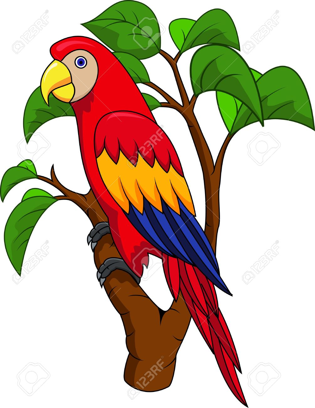 Blue Yellow Parrot Stock Vector Illustration And Royalty Free Blue