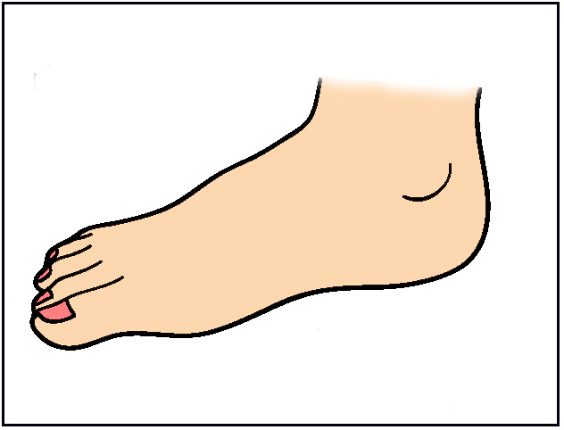 Best Foot Clipart #17812 - Clipartion.com