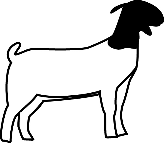 Boer Goat Silhouette Free Clipart Images