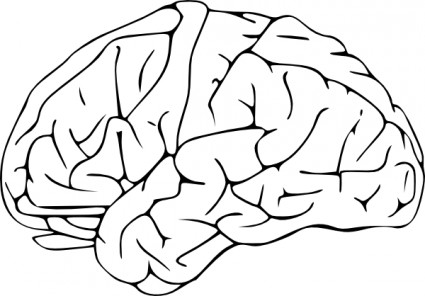 Brain Clip Art Free Vector In Open Office Drawing