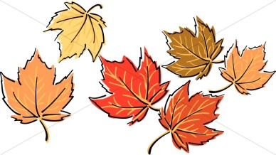 Bright Fall Maple Leaves Leaf Clipart