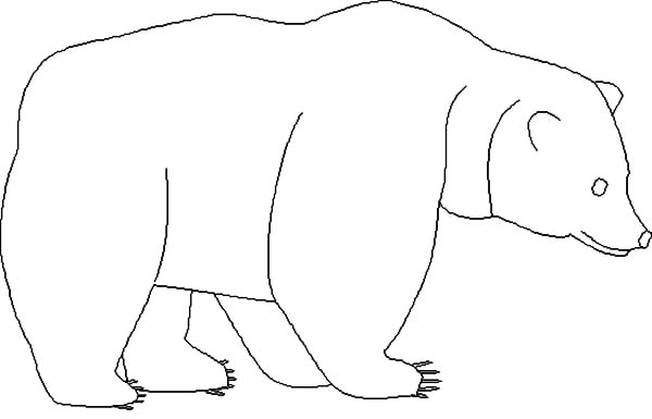 Brown Bear Outline Coloring Pages Brown Bear Outline Coloring