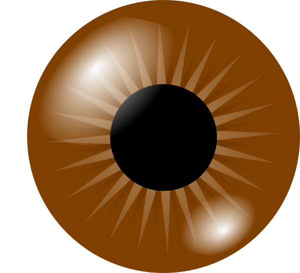 Brown Eye Clip Art At Vector Clip Art Online Royalty