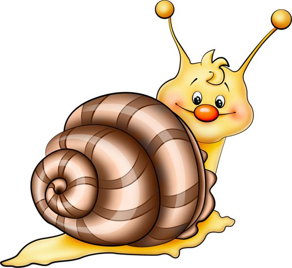 Brown Snail Cartoon Png Picture Tegninger Til B Rne Kort
