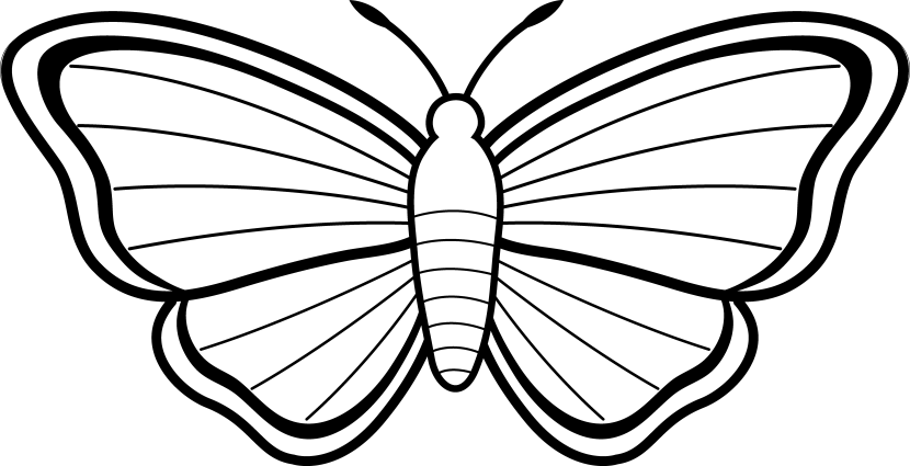 Butterfly Clip Art Black And White Free Clipart