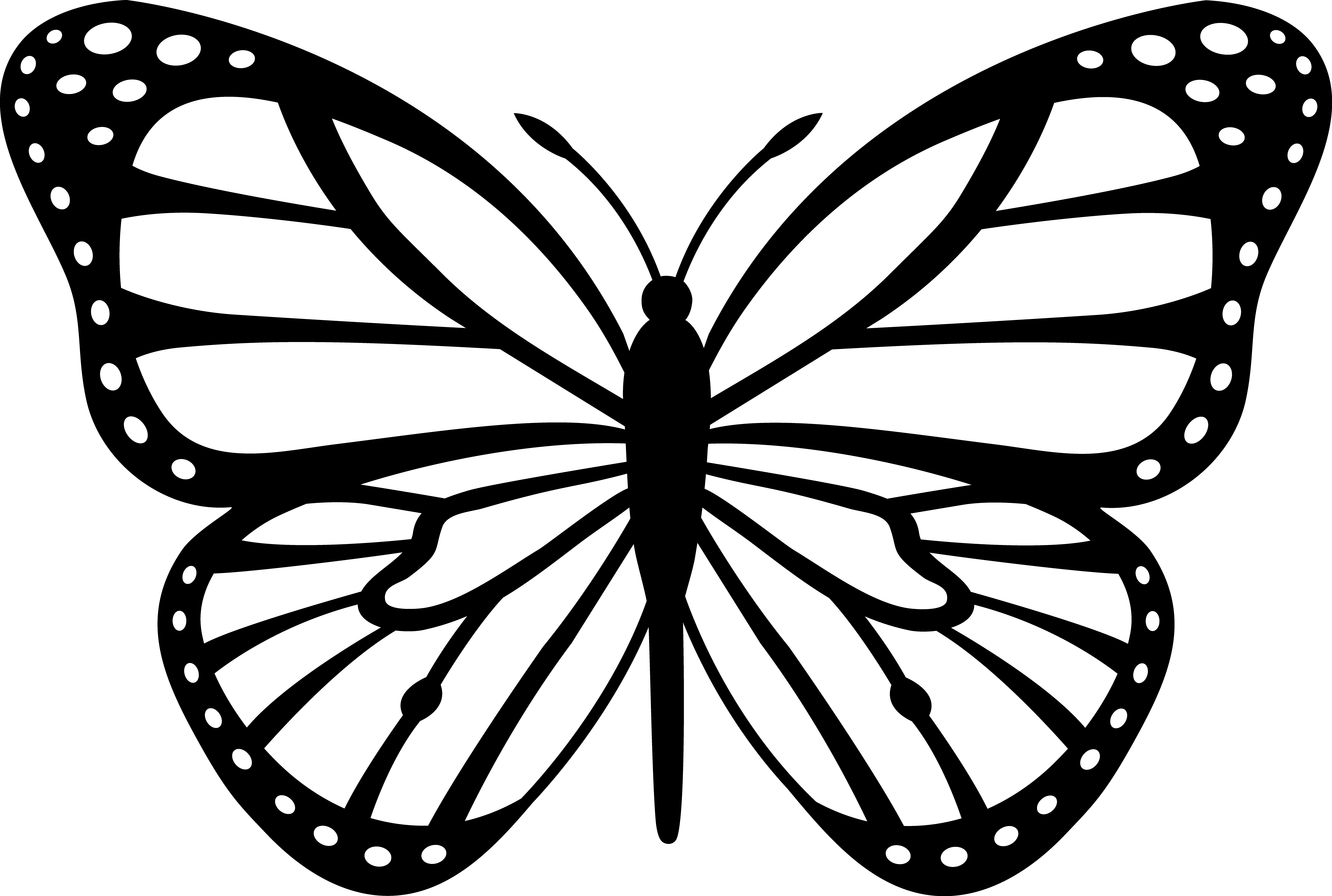 Butterfly Clipart Black And White Free Clipart