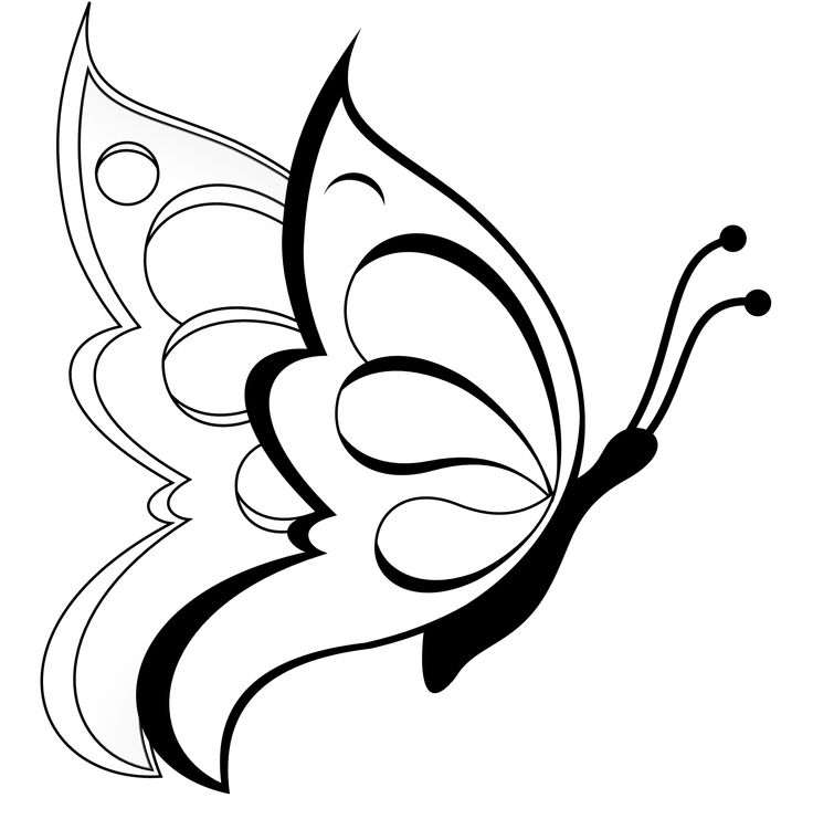 Butterfly Clipart Butterfly Black White Line Art Coloring