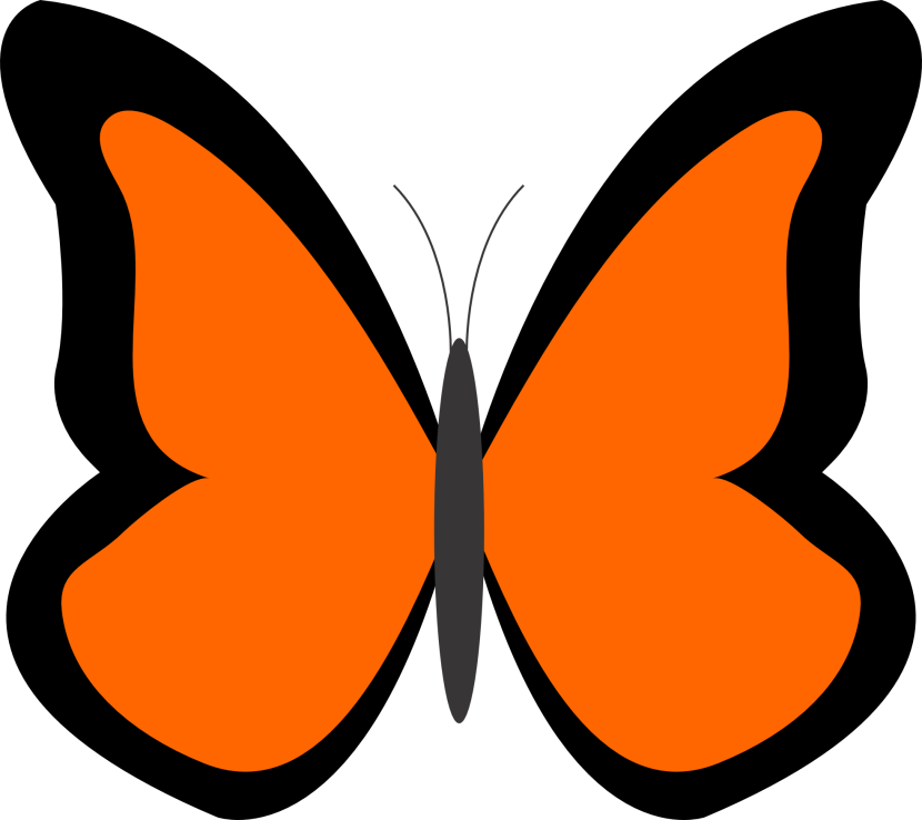 Butterfly Net Clipart Free Clipart Images