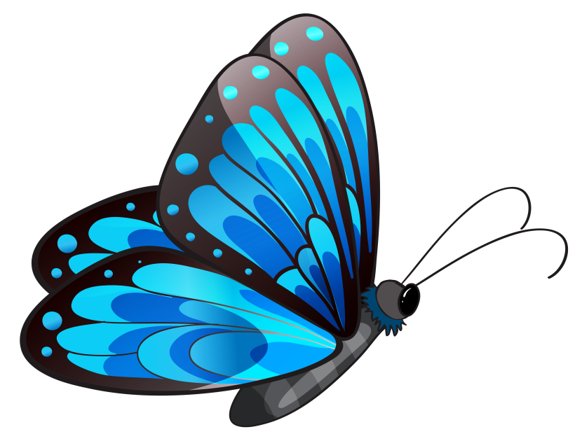 Butterfly Pictures Clip Art