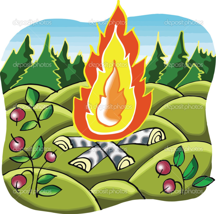 Camp Fire In Forest Cartoon Illustration Stock Vector Natvas
