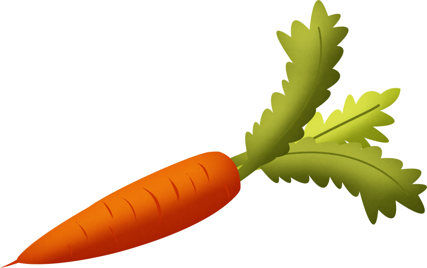 Carrot With Green Leaves Clipart Isolated Stock Photonobacks Com