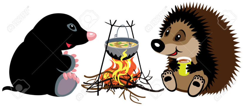 Cartoon Mole And Hedgehog Preparing Food On Campfire In Wild
