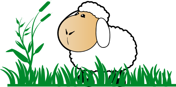 Cartoon Sheep Picture