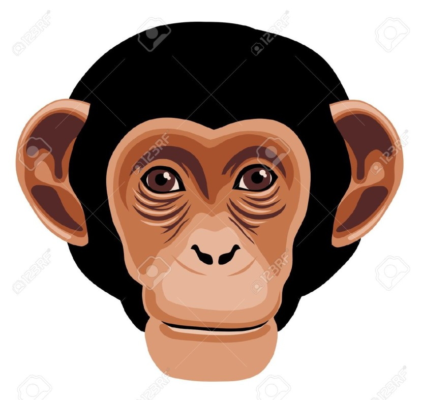 Chimpanzee Face Cliparts Stock Vector And Royalty Free Chimpanzee