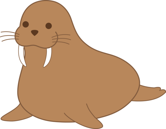 Best Walrus Clipart #14041 - Clipartion.com