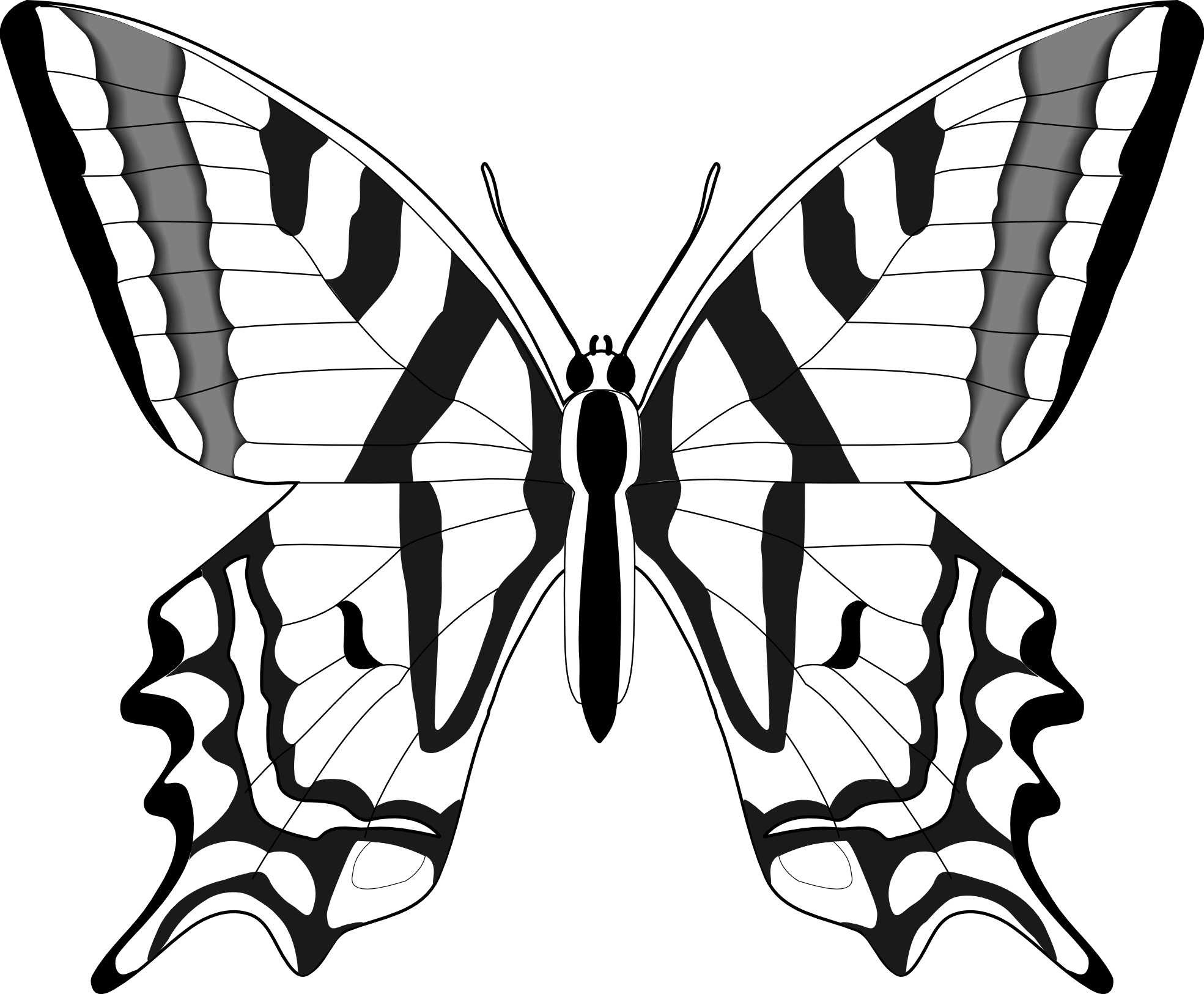 Clip Art Butterflies Black And White