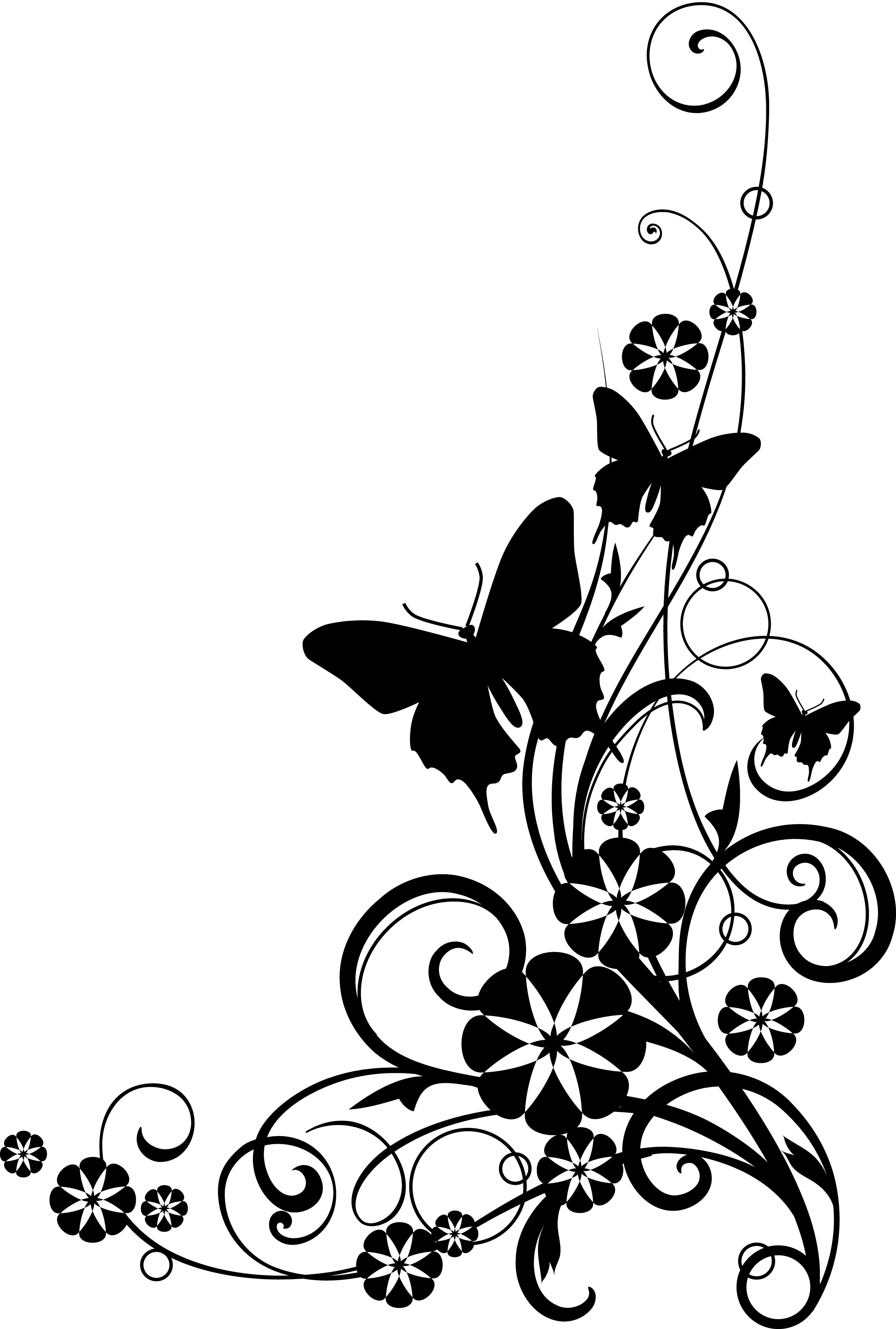Clip Art Flowers Black And White Border