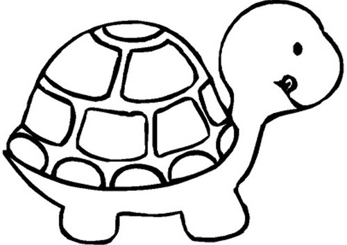 Clip Art Turtle Black And White