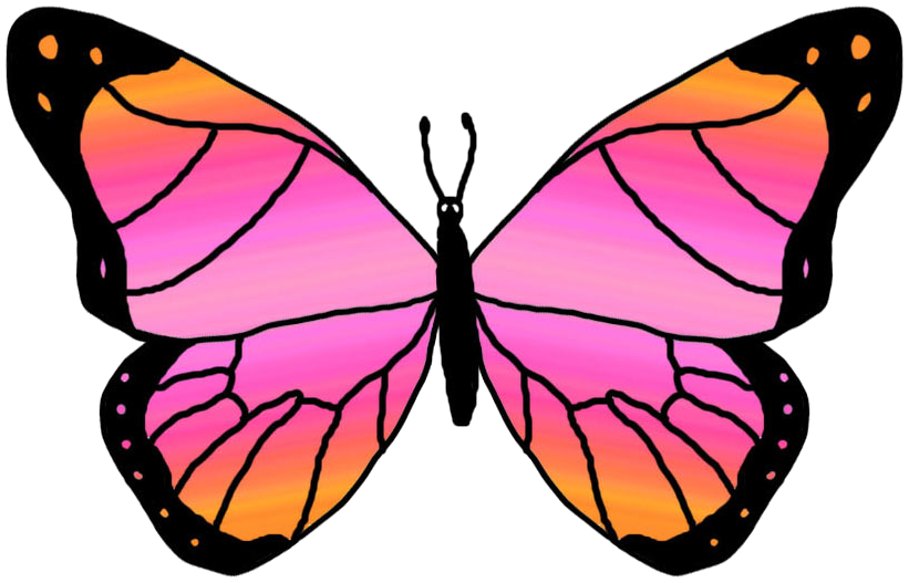 Clipart Butterfly Clip Art Free Clipart Images