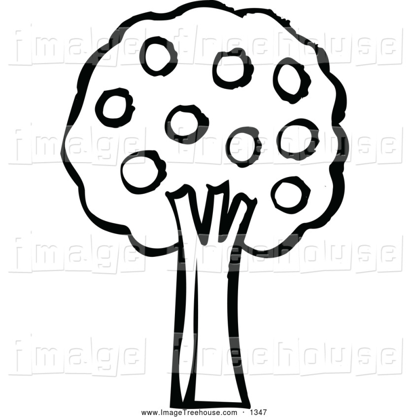 Clipart Of A Black And White Tree With Fruitnl Shop 7