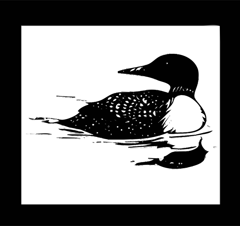 Clipart Postal Service Stamp Loon