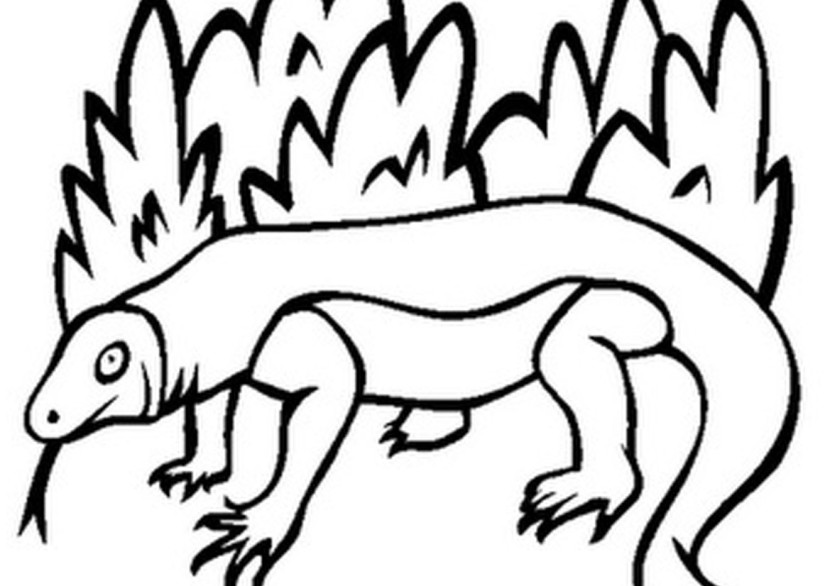 Coloring Pages Of Komodo Dragon In Bushes Coloring Clipart