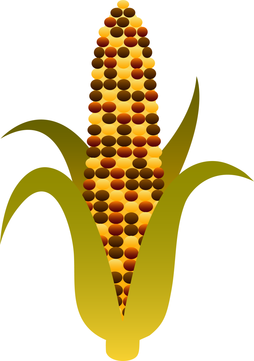 Corn On The Cob Clip Art