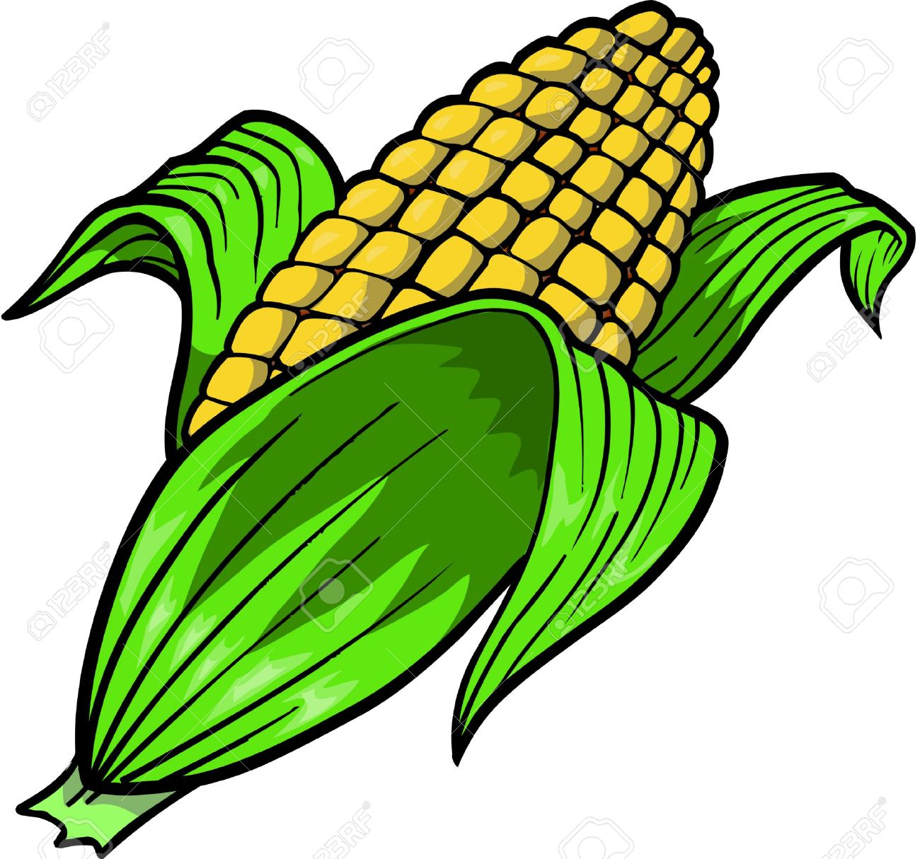 Corn Vector Illustration Stock Illustrations Cliparts And Royalty