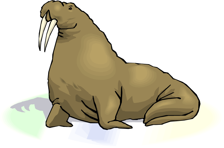 Cute Grey Walrus Clipart Free Clip Art Images