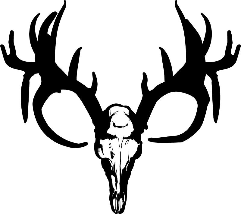 Deer Skull Decal Drop Tine Free Clipart Images