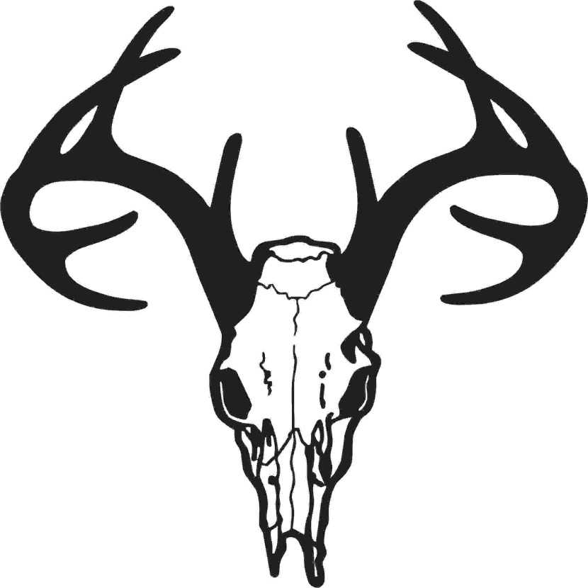 Deer Skull Drawing Free Clipart Images