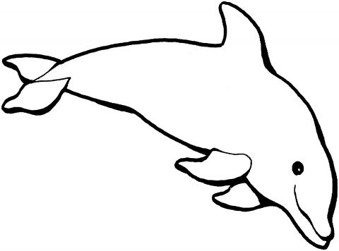 Dolphin Outline Clip Art Dolphin Outline Dolphin Pinterest