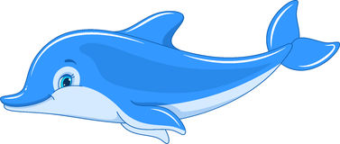 Dolphin Stock Illustrations Vectors Amp Clipart 4 Stock