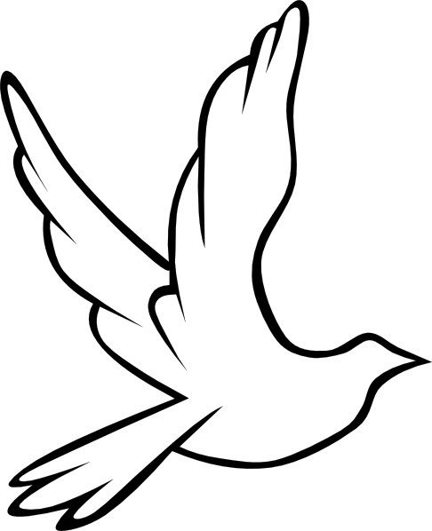 Dove Outline