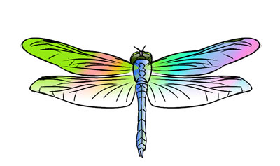 Dragonfly Clipart Black And White Free Clipart