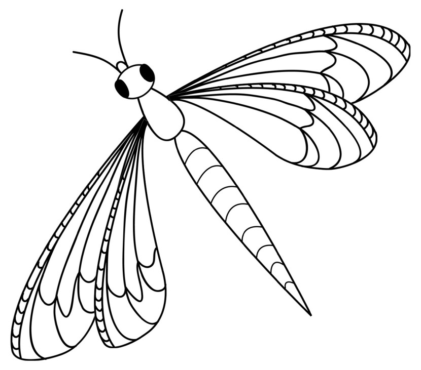 Dragonfly Clipart Black And White Gallery