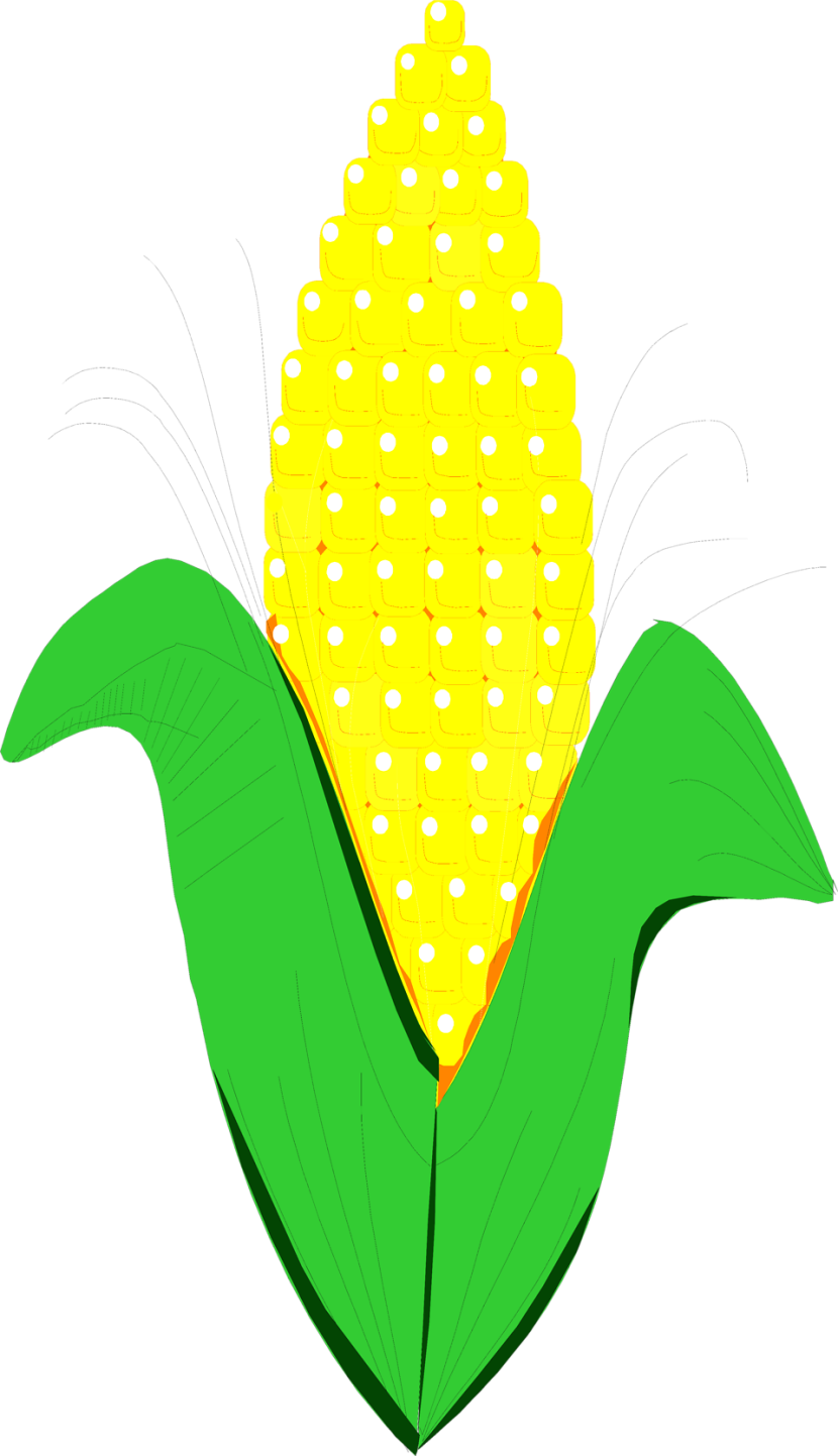 Drawing Of Corn Clipart Free Clip Art Images