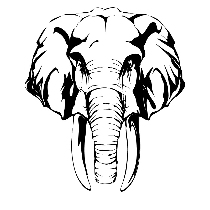 Line Drawing Elephant Face : Elephant head clipart clipartion