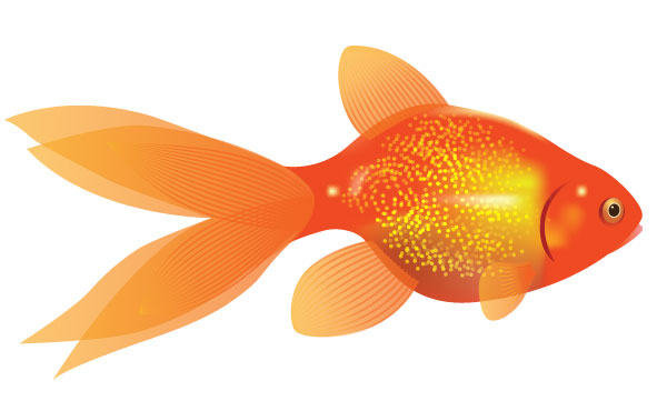 Elmos Goldfish Dorothy Clipart Free Clip Art Images